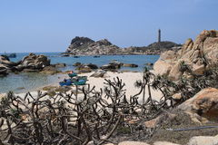 Ke Ga海滩在越南 免版税库存图片