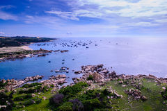 Ke-gummin strand, Vietnam royaltyfria foton