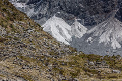Kea Point, New Zealand Royalty Free Stock Images