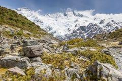Kea Point, New Zealand Royalty Free Stock Image
