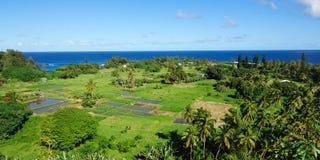 Keanae半岛毛伊,夏威夷 免版税库存照片