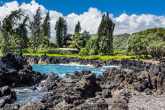 Keanaeschiereiland, Maui Hawaï Stock Foto