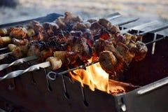 Kebab或烤肉 免版税库存照片