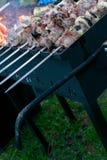 Kebab мяса Shish на протыкальнике металла жарит в духовке на гриле Партия BBQ Конец-вверх Барбекю с луком Сезон Barbucue Стоковые Изображения RF