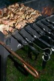 Kebab мяса Shish на протыкальнике металла жарит в духовке на гриле Партия BBQ Конец-вверх Барбекю с луком Сезон Barbucue Стоковые Фото