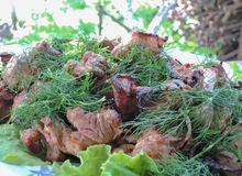 Kebab свинины мяса Стоковая Фотография