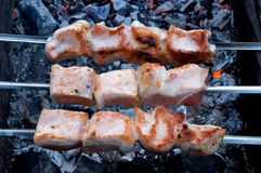 kebab Στοκ φωτογραφίες με δικαίωμα ελεύθερης χρήσης