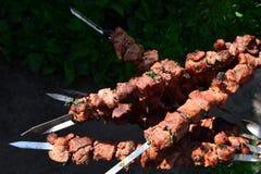 Kebab royaltyfri bild