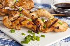 Kebab arrostito del pollo fotografia stock