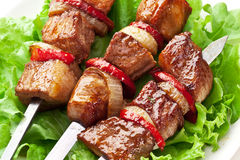 Kebab asado a la parrilla (shashlik) en escupitajos. Imagen de archivo libre de regalías