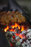 Kebab Barbeque. Juicy mutton(lamb) and chicken kebabs being roasted on a barbeque Stock Image