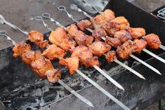 Kebab bij een picknick Stock Foto