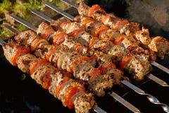Kebab con le verdure Immagini Stock Libere da Diritti