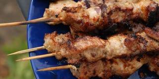 Kebab de porc Photographie stock libre de droits