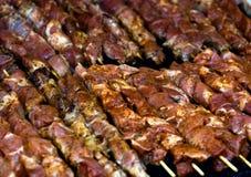 Kebab de Shis Photographie stock