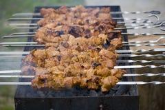 Kebab de Shish sur le pique-nique de ménage Photo stock