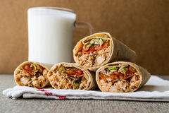 Kebab del doner di shawarma del pollo con il ayran o il latticello fotografia stock