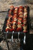 Kebab delicioso no BBQ Fotos de Stock Royalty Free