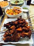 Kebab della carne di maiale e del pollo Fotografia Stock