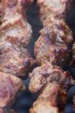 Kebab della carne fresca fritto e fumato su una griglia del carbone Fotografia Stock
