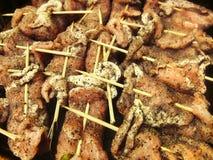 Kebab di kebab della carne di maiale del manzo del BBQ della carne della griglia del barbecue sugli spiedi Fotografia Stock Libera da Diritti