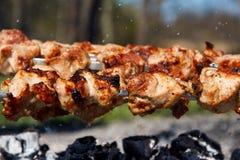 Kebab di Shish Immagini Stock Libere da Diritti