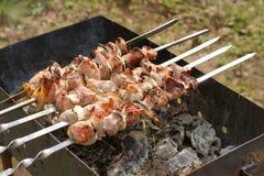 Kebab di Shish con il limone fresco e la cipolla esterni Immagini Stock