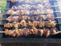 Kebab di Shish sulla griglia Fotografia Stock