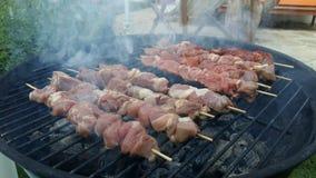 Kebab di Sish Fotografie Stock