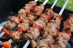 Kebab e funghi che grigliano sugli spiedi sui carboni immagini stock libere da diritti
