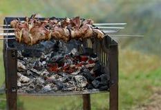 Kebab en la parrilla Fotografía de archivo libre de regalías