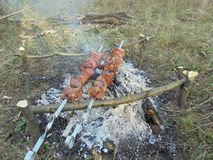 Kebab en los pinchos que se fríe en un fuego en la tierra fotos de archivo