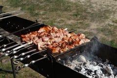 Kebab fritto sulla griglia Fotografie Stock