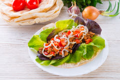 Kebab - meat, bread and vegetables Royalty Free Stock Images