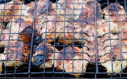 Kebab meat barbecue Royalty Free Stock Photo