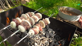 Kebab, meat on the coals stock video footage