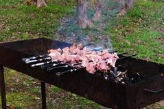 Kebab na grill kratownicie Obraz Royalty Free