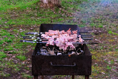 Kebab na grill kratownicie Obrazy Royalty Free