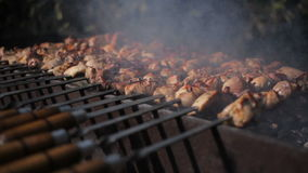 Kebab na grillu z bliska zbiory wideo
