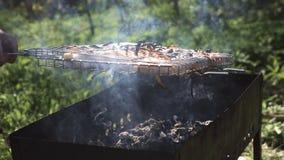 Kebab nella griglia del barbecue video d archivio