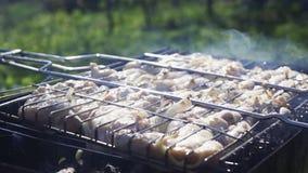 Kebab nella griglia del barbecue stock footage