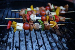 Kebab on outdoor grill. Royalty Free Stock Image