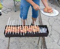 Kebab på kol royaltyfri foto