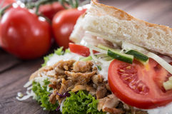 Kebab and Pita with ingredients Royalty Free Stock Photography