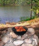 Kebab podpieka na grillu na brzeg jezioro zdjęcie royalty free