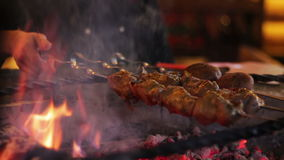Kebab prepared on the grill in the restaurant stock video