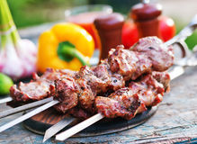 Kebab. And raw vegetables on a table and in the garden stock image