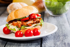 Kebab sandwich Royalty Free Stock Image