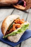 Kebab sandwich Royalty Free Stock Photography