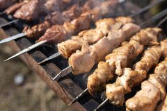Kebab Shish на протыкальниках зажарено на меднике стоковая фотография